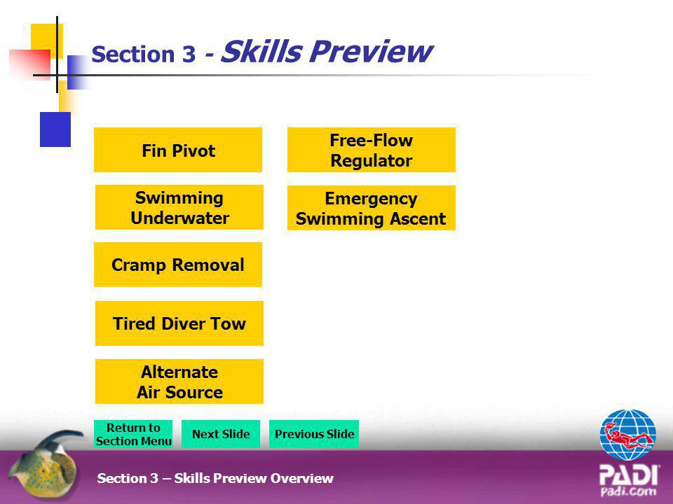 Section 3 - Skills Preview