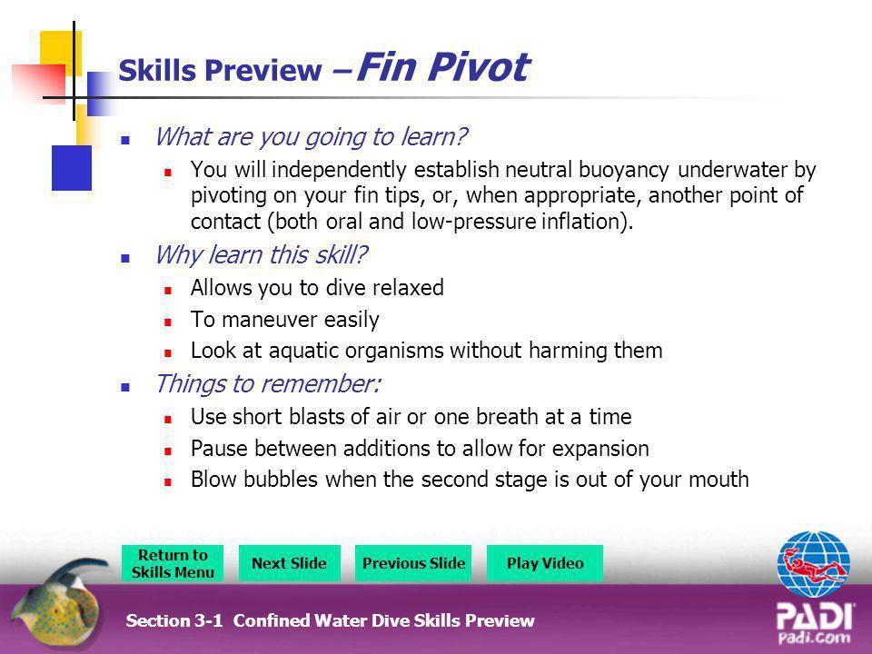 Skills Preview – Fin Pivot