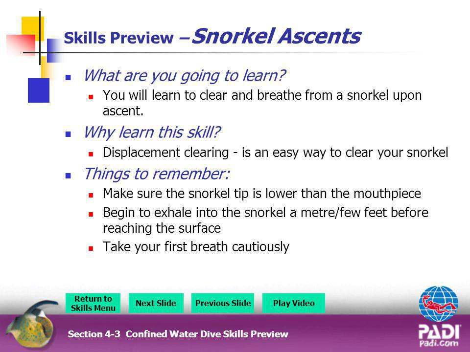 Skills Preview – Snorkel Ascents