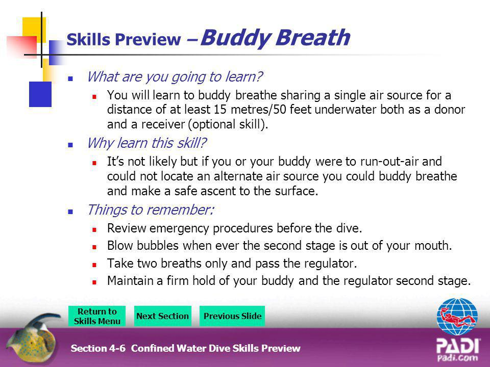 Skills Preview – Buddy Breath