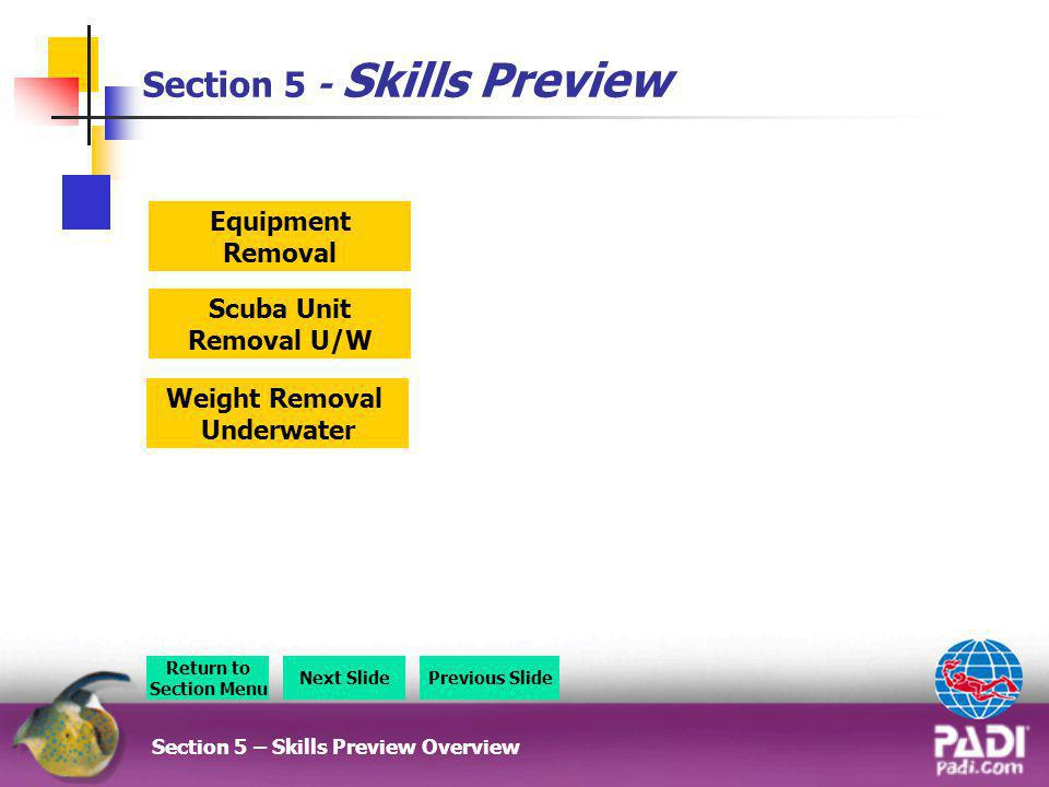 Section 5 - Skills Preview