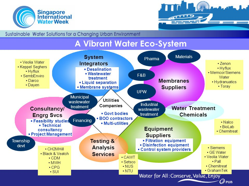 A Vibrant Water Eco-System
