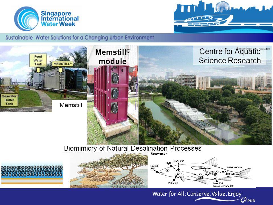 Centre for Aquatic Science Research Memstill module