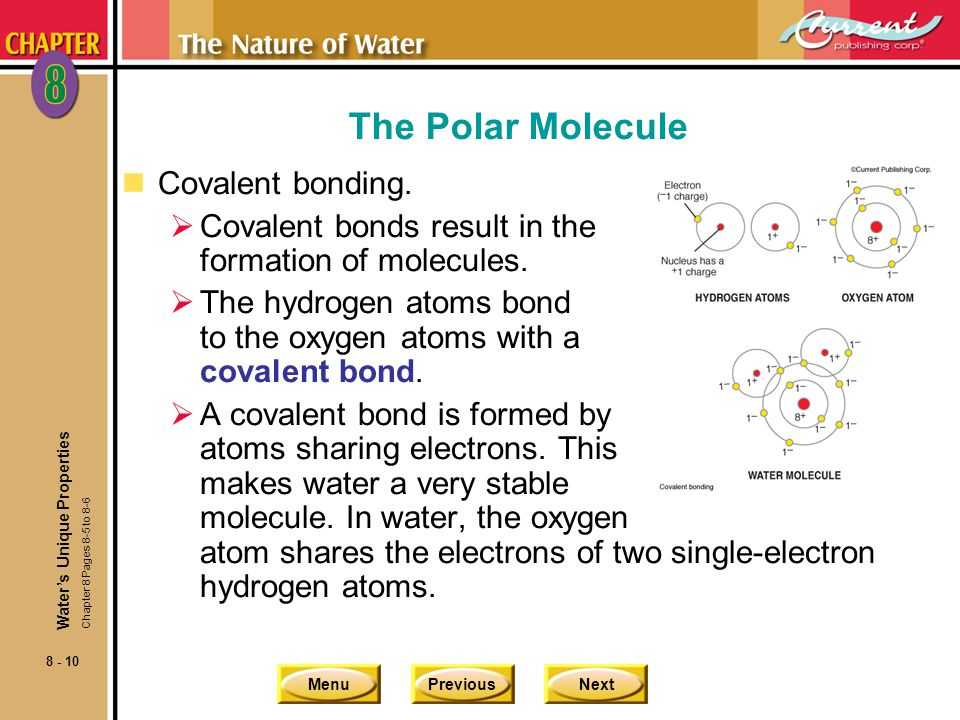 The Polar Molecule Covalent bonding.