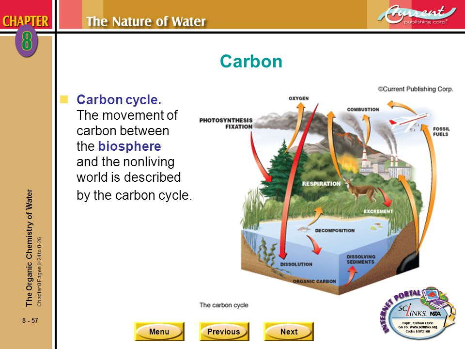 Carbon Carbon cycle. The movement of carbon between the biosphere and the nonliving world is described by the carbon cycle.