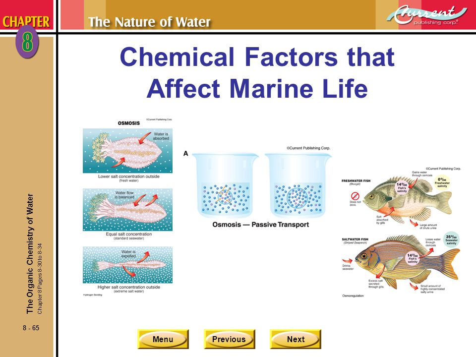 Chemical Factors that Affect Marine Life