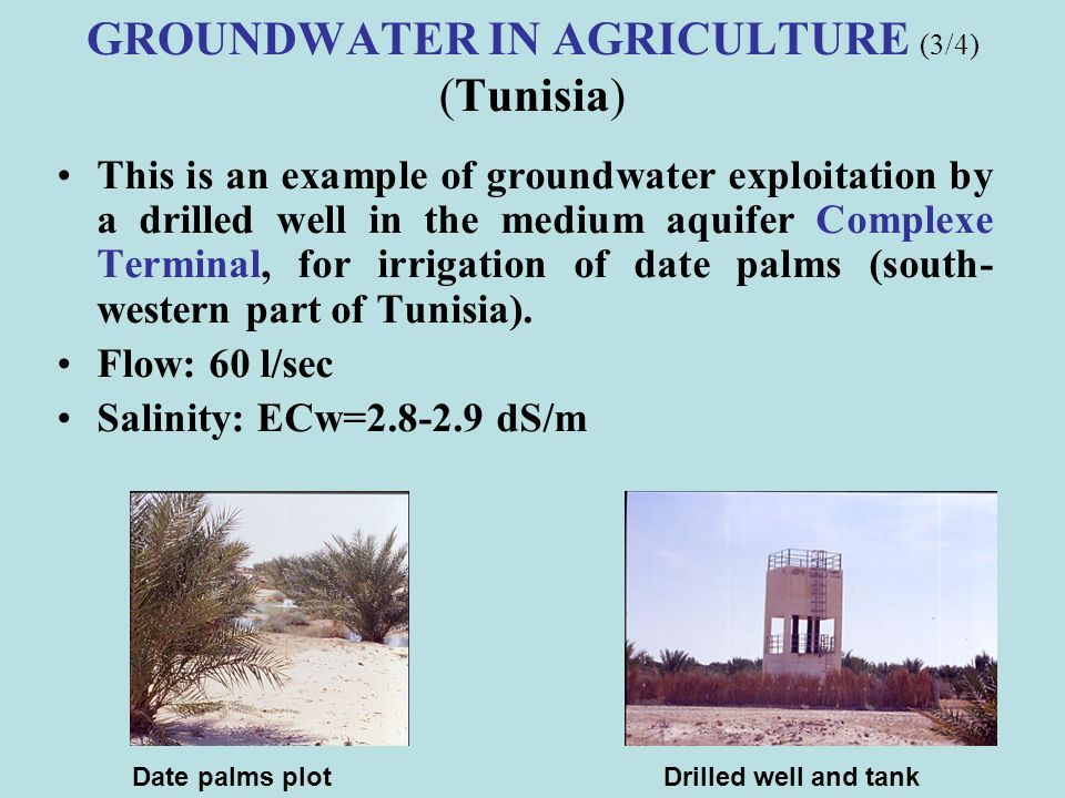 GROUNDWATER IN AGRICULTURE (3/4) (Tunisia)