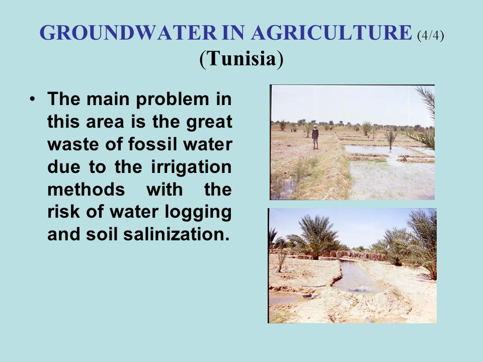 GROUNDWATER IN AGRICULTURE (4/4) (Tunisia)
