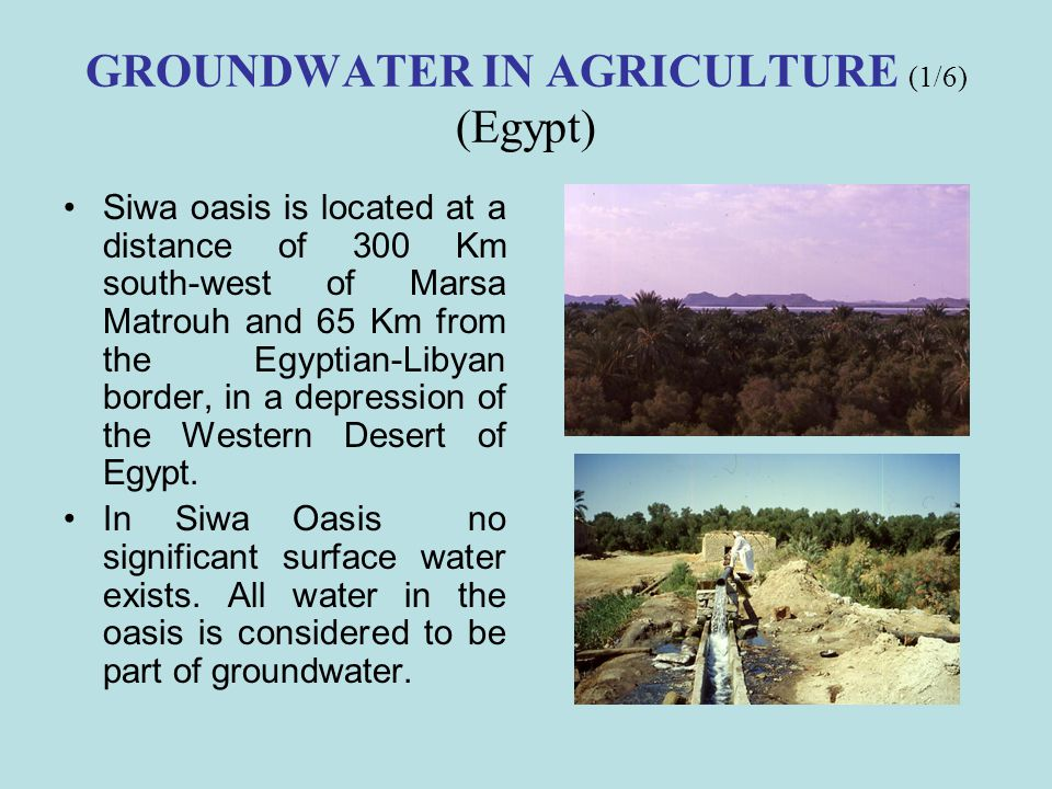 GROUNDWATER IN AGRICULTURE (1/6) (Egypt)