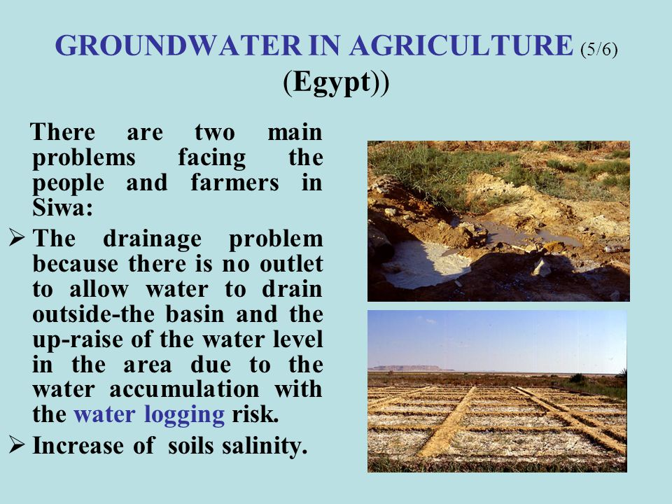 GROUNDWATER IN AGRICULTURE (5/6) (Egypt))