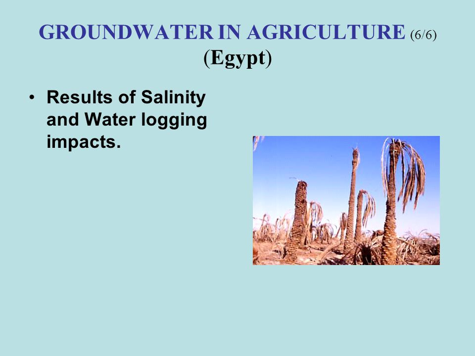 GROUNDWATER IN AGRICULTURE (6/6) (Egypt)
