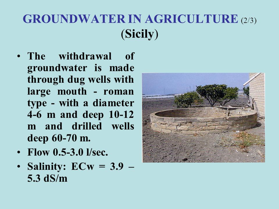GROUNDWATER IN AGRICULTURE (2/3) (Sicily)