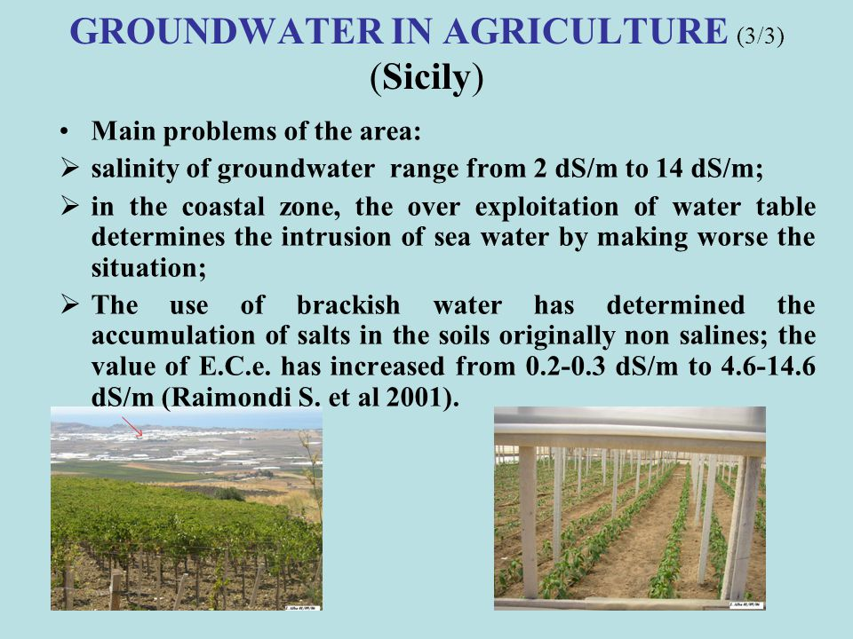 GROUNDWATER IN AGRICULTURE (3/3) (Sicily)