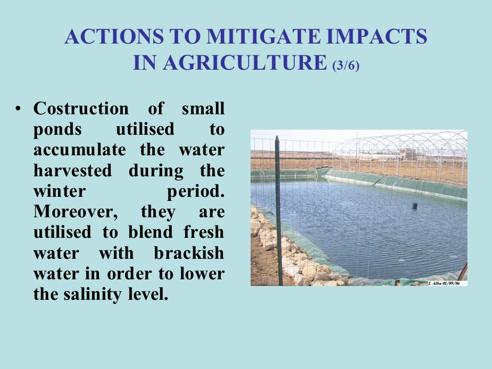ACTIONS TO MITIGATE IMPACTS IN AGRICULTURE (3/6)