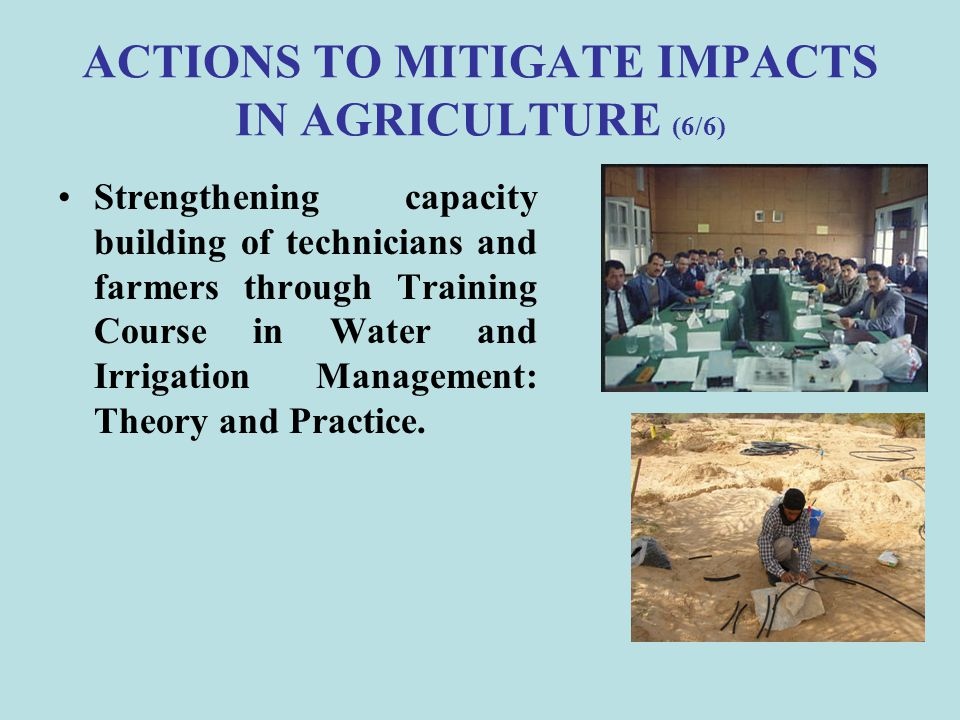 ACTIONS TO MITIGATE IMPACTS IN AGRICULTURE (6/6)