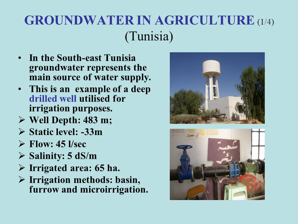 GROUNDWATER IN AGRICULTURE (1/4) (Tunisia)