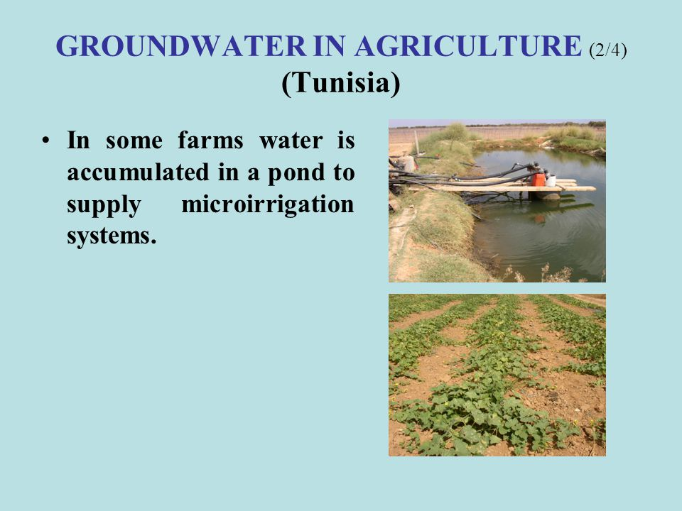 GROUNDWATER IN AGRICULTURE (2/4) (Tunisia)