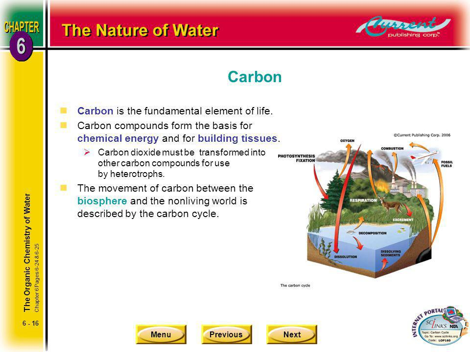 Carbon Carbon is the fundamental element of life.