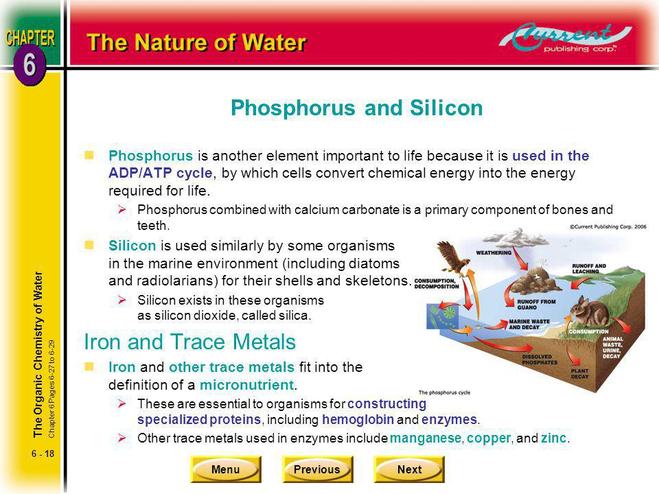 Phosphorus and Silicon
