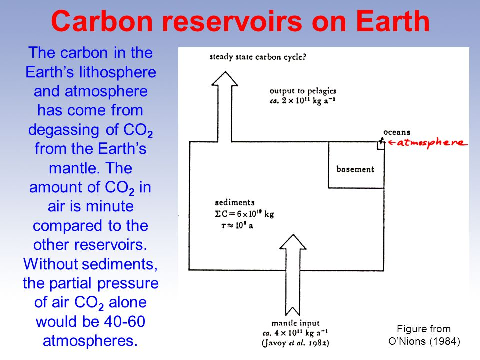 Carbon reservoirs on Earth