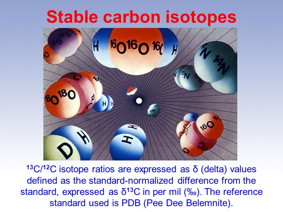Stable carbon isotopes
