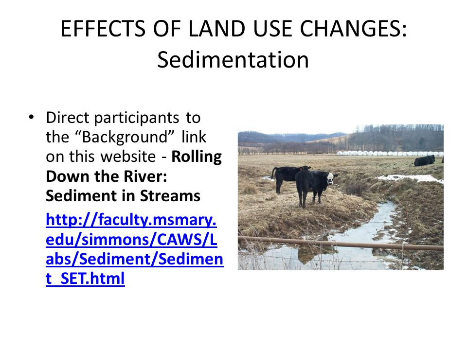 EFFECTS OF LAND USE CHANGES: Sedimentation