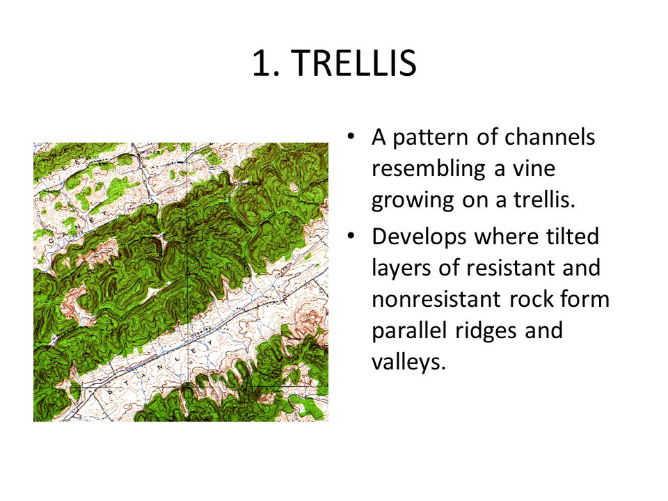 1. TRELLIS A pattern of channels resembling a vine growing on a trellis.