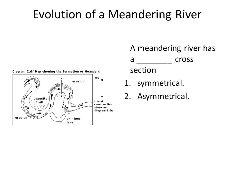 Evolution of a Meandering River