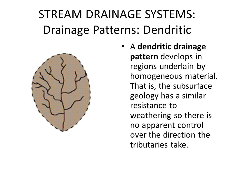 STREAM DRAINAGE SYSTEMS: Drainage Patterns: Dendritic