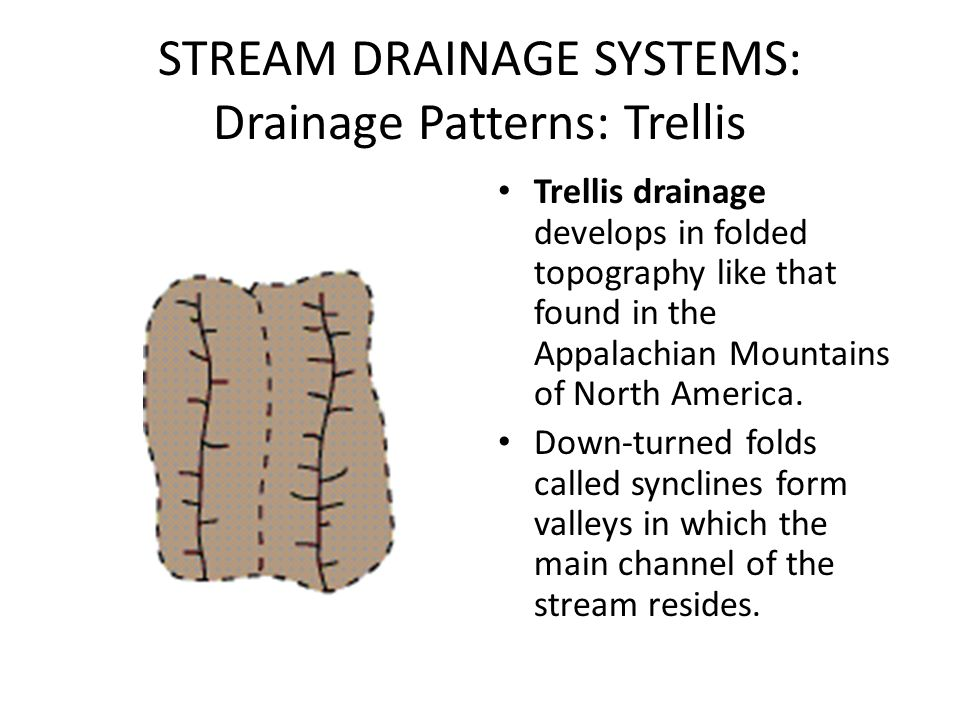 STREAM DRAINAGE SYSTEMS: Drainage Patterns: Trellis