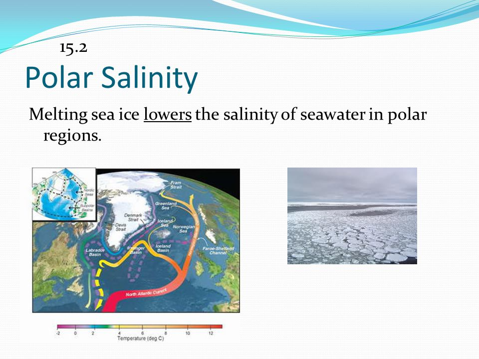 15.2 Polar Salinity Melting sea ice lowers the salinity of seawater in polar regions.