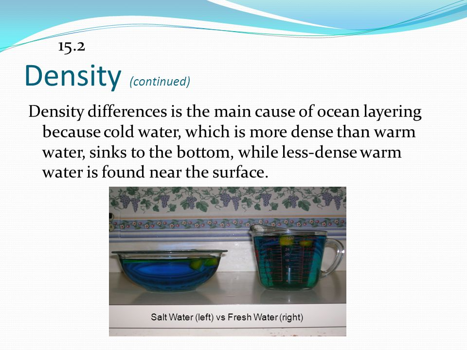 Salt Water (left) vs Fresh Water (right)