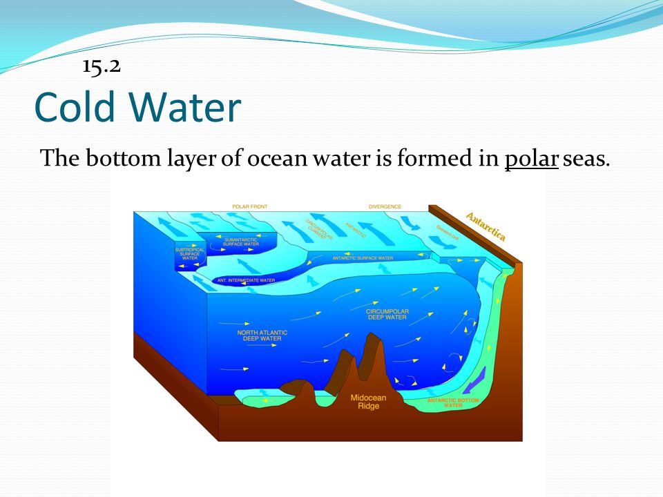 15.2 Cold Water The bottom layer of ocean water is formed in polar seas.
