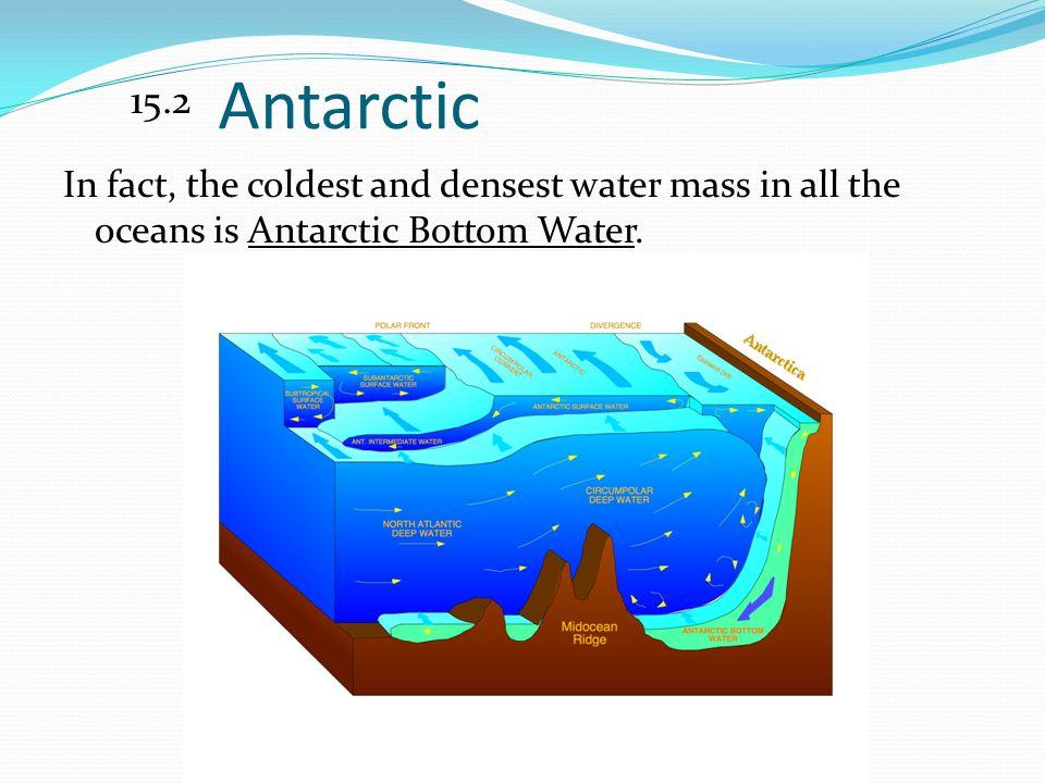 15.2 Antarctic.