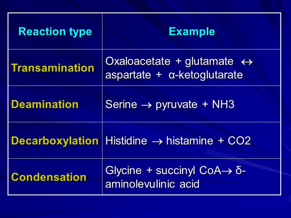 Example Reaction type. Oxaloacetate + glutamate  aspartate + α-ketoglutarate. Transamination. Serine  pyruvate + NH3.