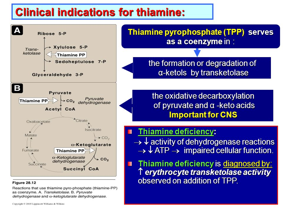 Clinical indications for thiamine: