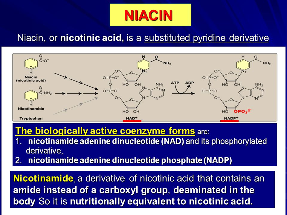 Niacin, or nicotinic acid, is a substituted pyridine derivative