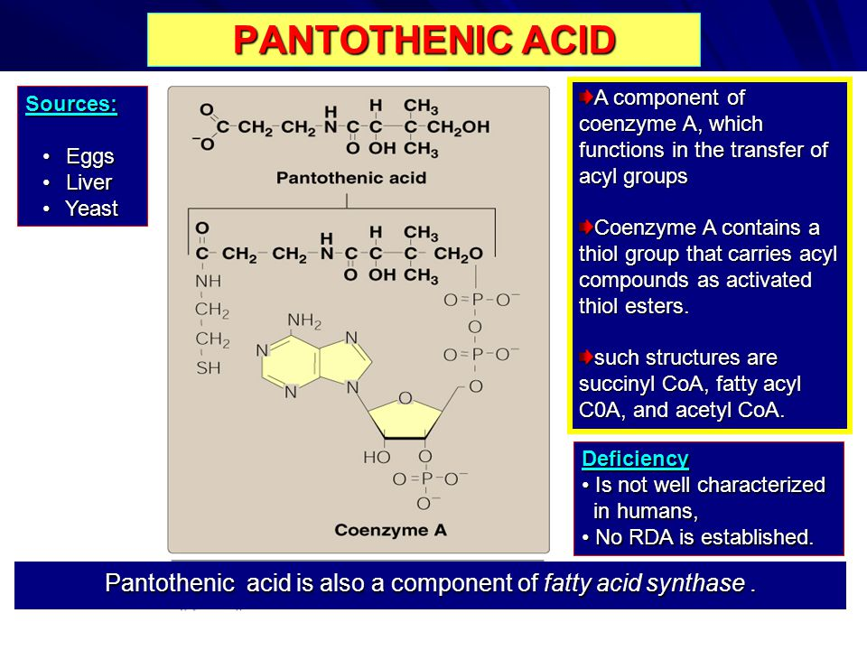 Pantothenic acid is also a component of fatty acid synthase .