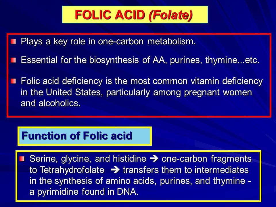 FOLIC ACID (Folate) Function of Folic acid