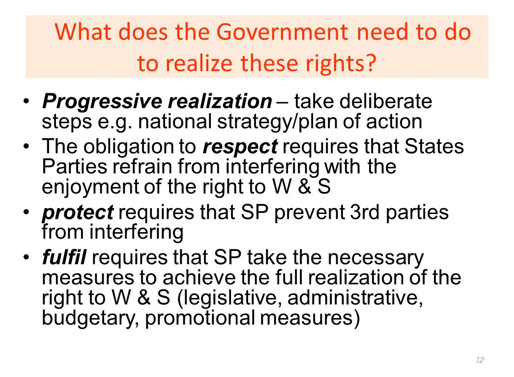 What does the Government need to do to realize these rights