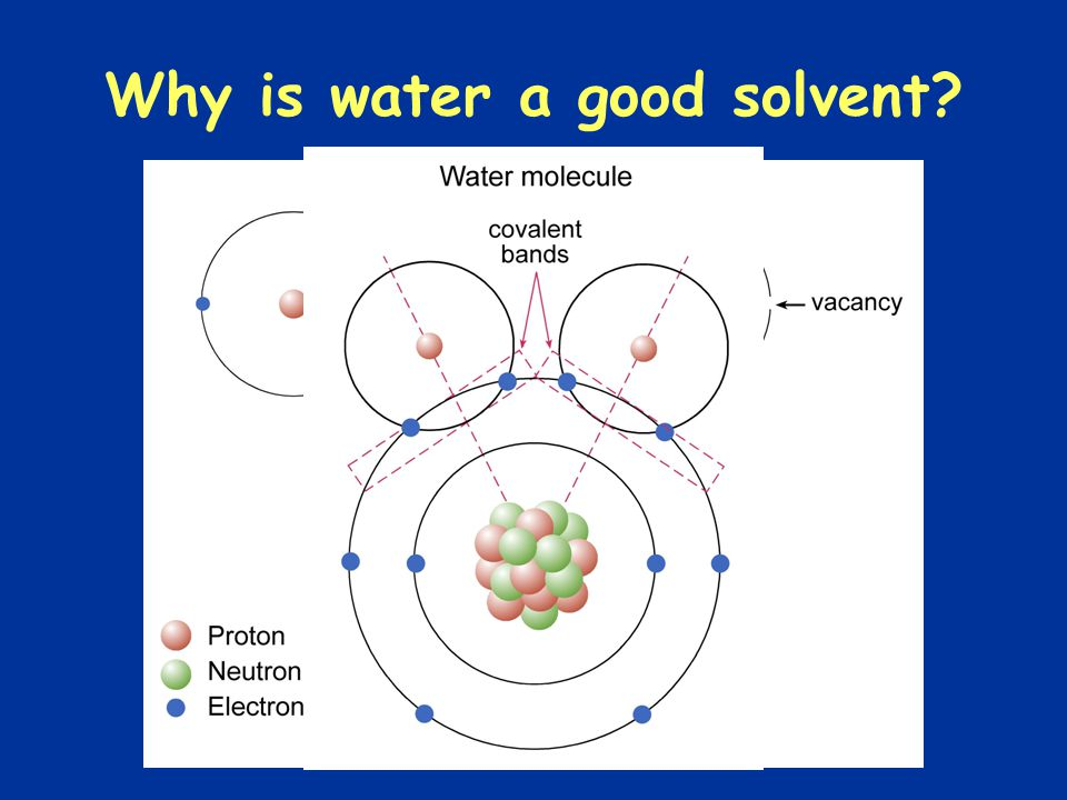 Why is water a good solvent