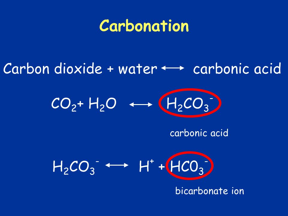 Carbonation Carbon dioxide + water carbonic acid CO2+ H2O H2CO3-