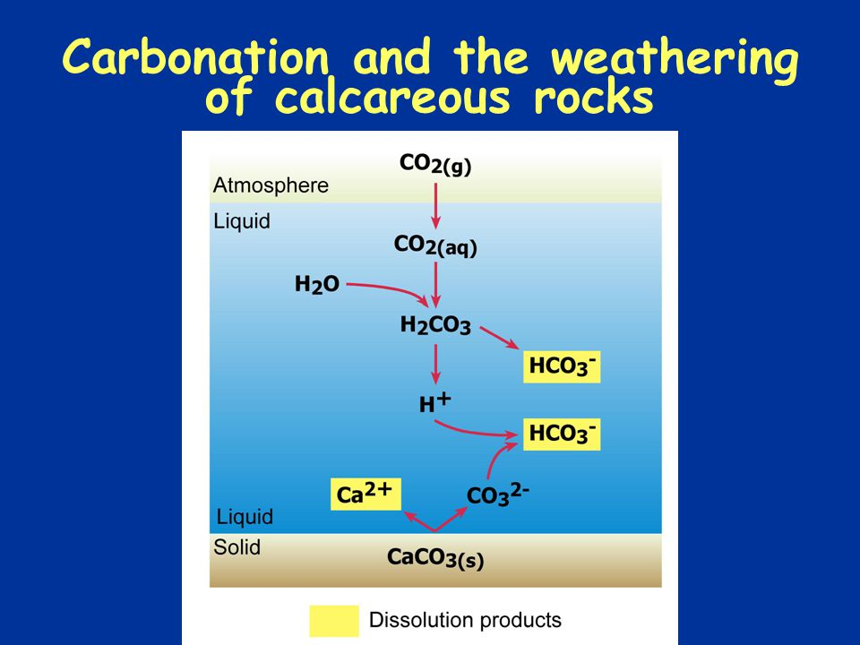 Carbonation and the weathering of calcareous rocks