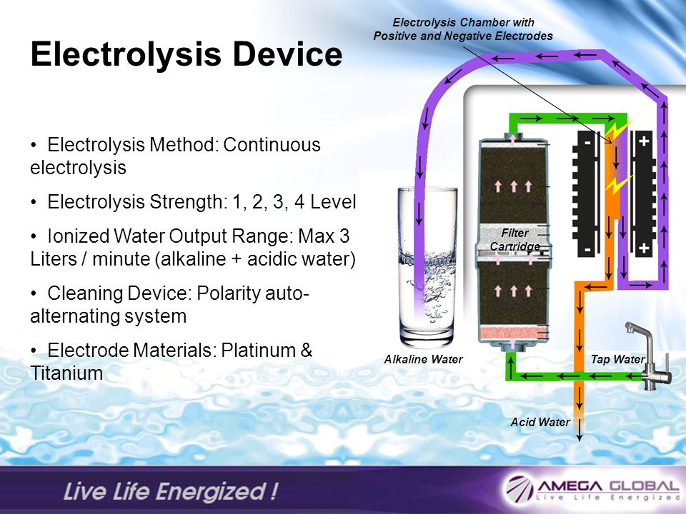 Electrolysis Chamber with Positive and Negative Electrodes