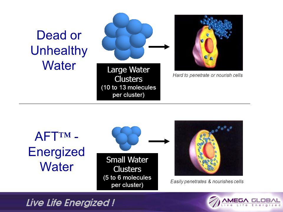 Dead or Unhealthy Water