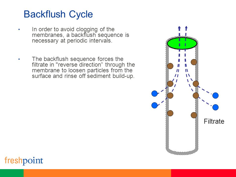 Backflush Cycle Filtrate