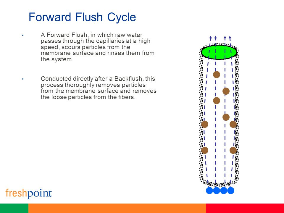 Forward Flush Cycle