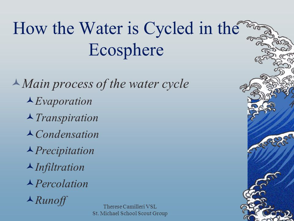 How the Water is Cycled in the Ecosphere