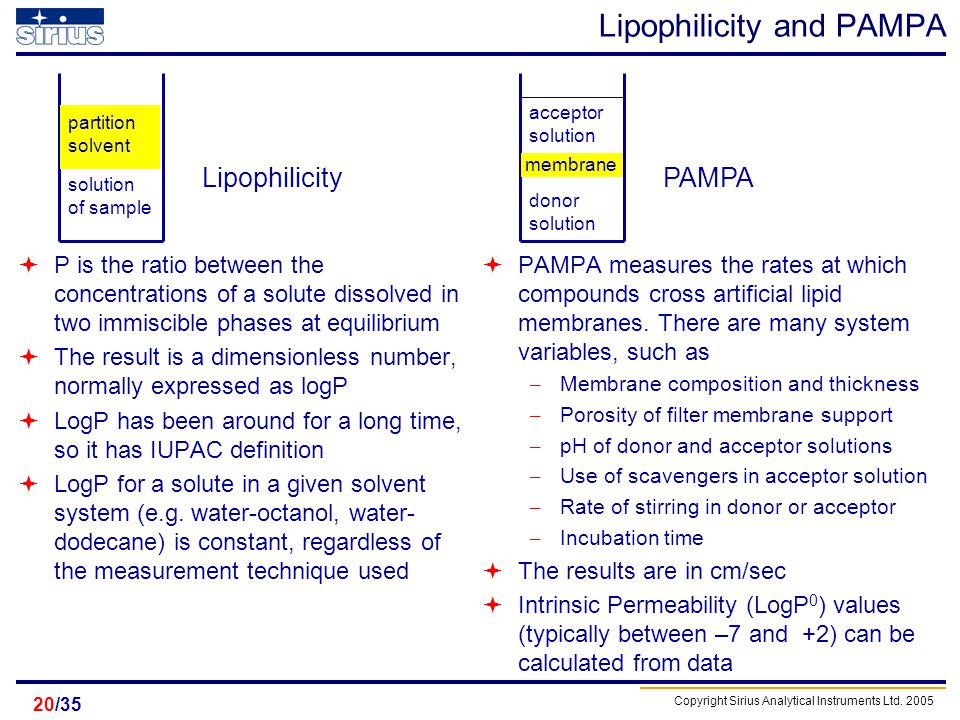 Lipophilicity and PAMPA