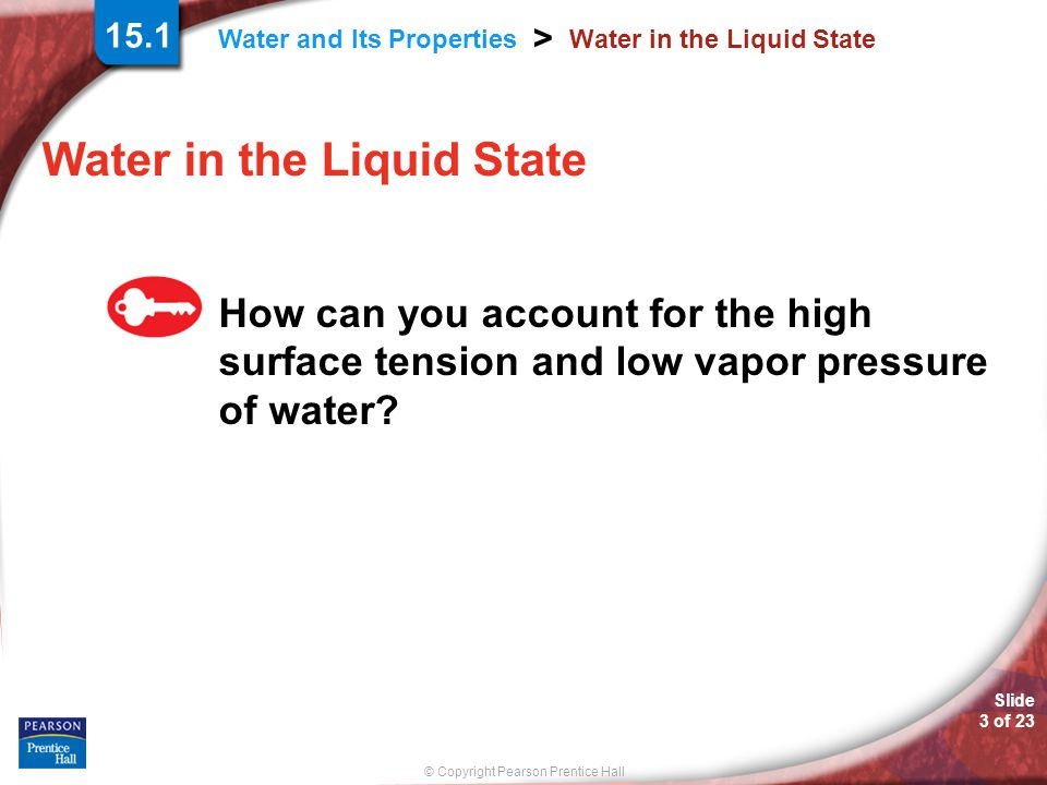 Water in the Liquid State